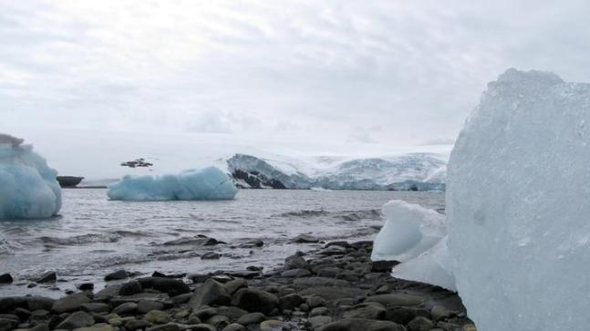Ocean ice in Antarctica psychologist to its second most minimal level on record