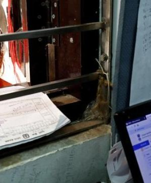 Aadhaar can't guarantee 100 for each penny validation, UIDAI discloses to Supreme Court