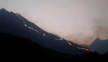 Theni forest fire: 9 dead, 27 safeguarded as inquiry operations proceed in Kurangani slopes