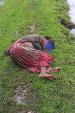 A Tribal Woman physically assaulted in Basirhat