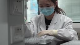 Here's what worries some experts about how Chinese companies are developing potential Covid-19 vaccines - CNN Video