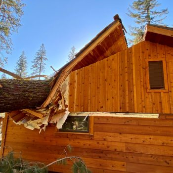 Yosemite National Park closed until Tuesday due to wind damage