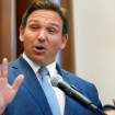 DeSantis says Florida 'chose freedom over Fauci-ism,' urges conservatives to have a 'backbone'