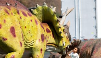 Jurassic Quest drive-thru experience takes over Pasadena Rose Bowl